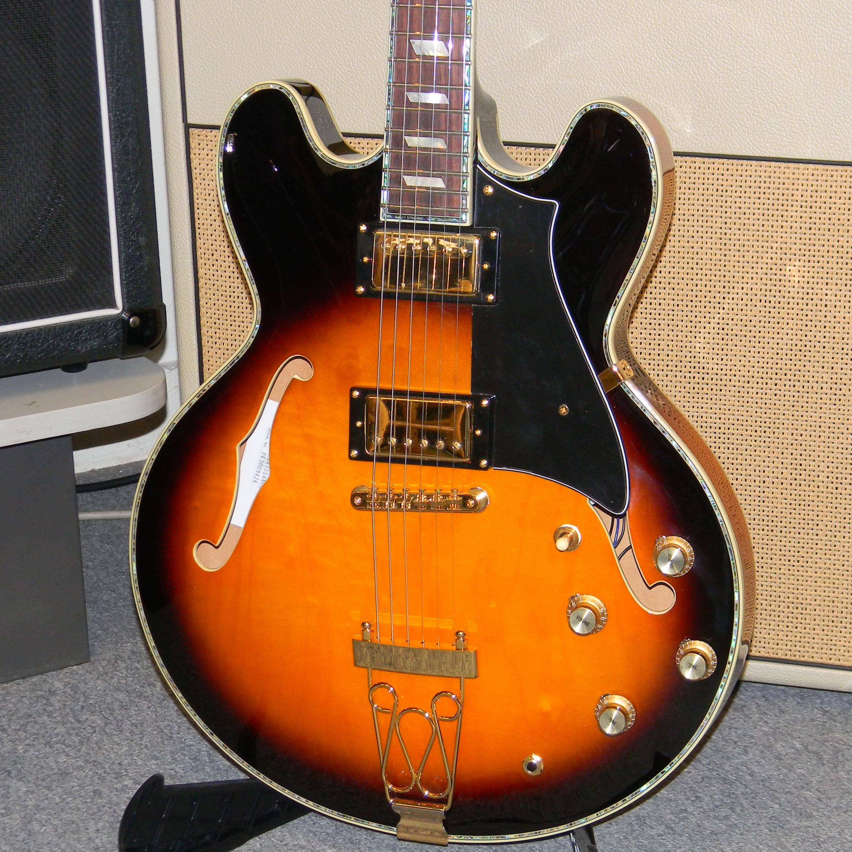 peerless march 2013 042 san antonio guitar store guitar tex. Black Bedroom Furniture Sets. Home Design Ideas