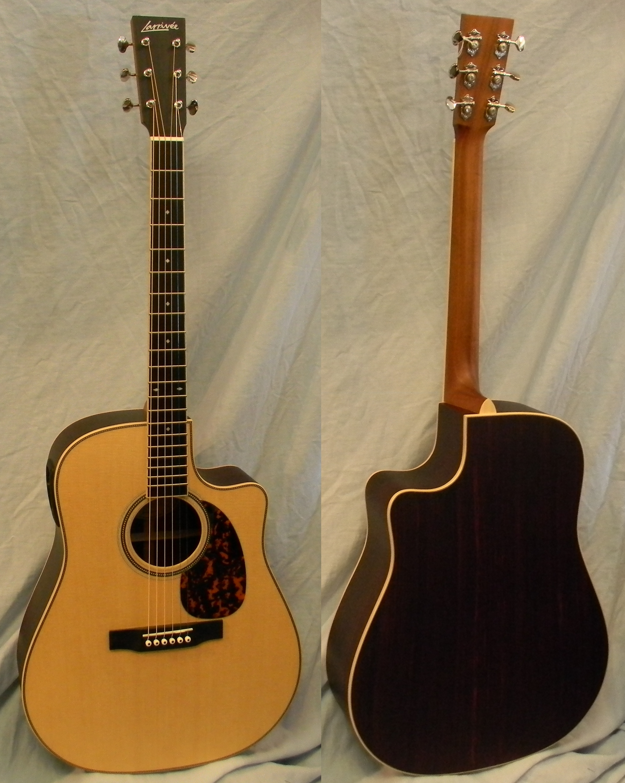 DV 40 R with Baggs Stagepro pickup system. List: $2,599.00 SAL: $1,975.00